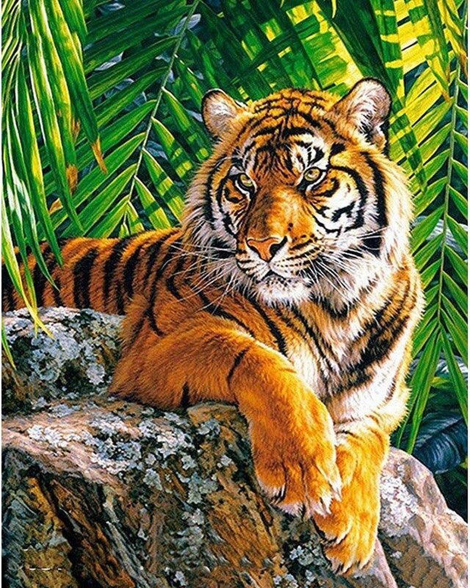 Premium Paintings - Tijger op Rots - Diamond Painting Volwassenen - Pakket Volledig / Pakket Full - 30x40 - Moederdag cadeautje