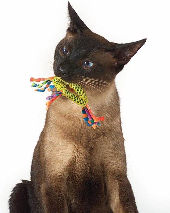 Petstages Dental Health Chew Kattenspeelgoed - Catnip