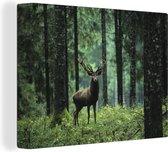 Hert in het bos Canvas 40x30 cm - klein - Foto print op Canvas schilderij (Wanddecoratie woonkamer / slaapkamer) / Wilde dieren Canvas Schilderijen